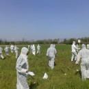 26 aprile, Vicenza: appello a tutti gli Organismi Genuinamente Mobilitati