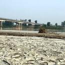 E' arrivata la siccità. Tra cambiamenti climatici e cattive gestioni, il futuro è arido