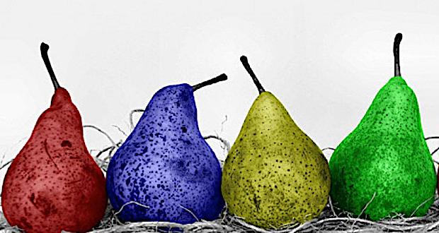 fonte: http://www.eco-magazine.info/conflitti/ogm/7397/ogm-nei-nostri-supermercati-pochi-ma-presenti.html